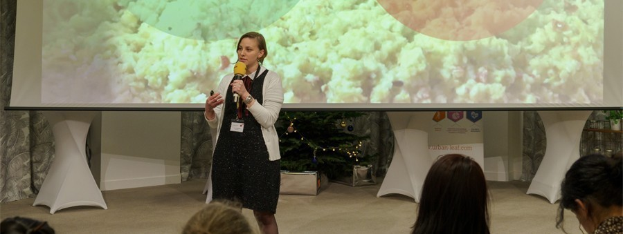 Ninna, ToasterLAB demoday
